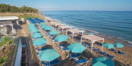 Stranden vid hotell Rethymno Mare Resort, Grekland.