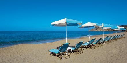 Standen vid hotell Rethymno Mare Resort, Grekland.