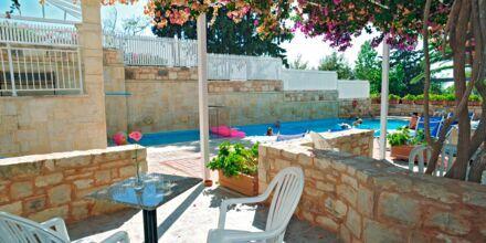 Poolen vid familjerummen med delad pool på hotell Rethymno Mare Resort, Grekland.