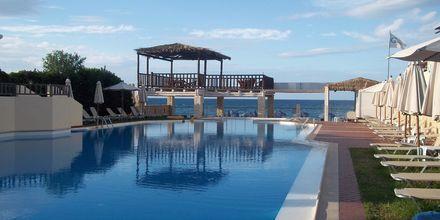 Allmän pool mitt emot hotell Revekka i Platanias på Kreta.
