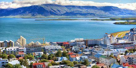 Vacker natur och liten storstad - Reykjavik!
