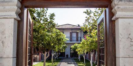 Hotellområdet på Rigas, Skopelos.