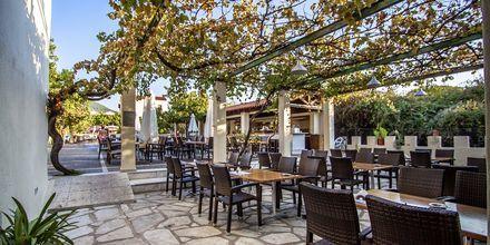 Restaurang på Rigas, Skopelos.