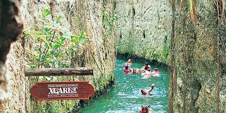 Natur- och djurparken Xcaret på Riviera Maya i Mexiko.