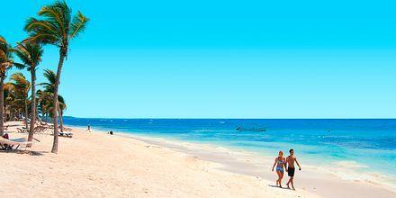 Strand i Tulum på Riviera Maya, Mexiko.
