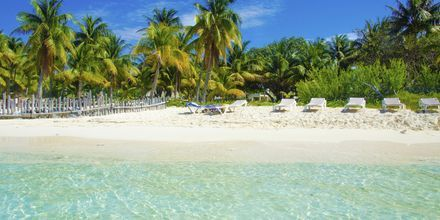 Isla Mujeres utanför Cancun på Riviera Maya, Mexiko.