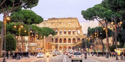 Colosseum i Rom, Italien.