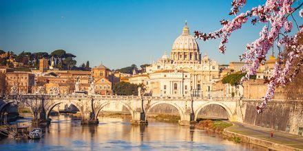 Peterskyrkan i Rom, Italien.