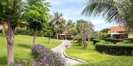 Hotell Romana Beach Resort i Phan Thiet, Vietnam.