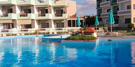 Poolen på hotell Rose i Kato Stalos på Kreta.