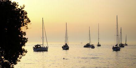 Solnedgång över Ronvinj i Istrien, Kroatien.