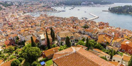Vy över vackra Ronvinj i Istrien, Kroatien.