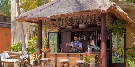 Bar på hotell Royal Garden Villas i Playa de las Americas, Teneriffa.
