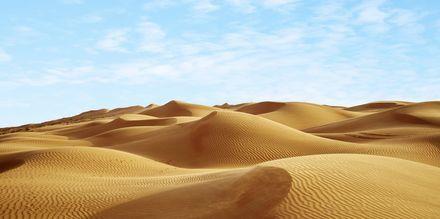 Ökenlandskap i Oman.