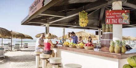 Coco Shack Beach Bar på Salalah Rotana Resort i Salalah, Oman.