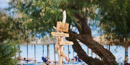Njut av sköna dagar på stranden i Pythagorion på Samos, Grekland.