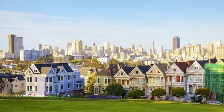 De färgglada husen i förgrunden kallas för Painted Ladies.