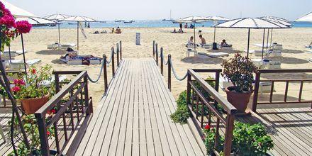 Morabeza Beach Club ligger  direkt på stranden i Santa Maria, Kap Verde.