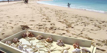 Souvenirer på stranden Santa Maria Beach, Kap Verde.