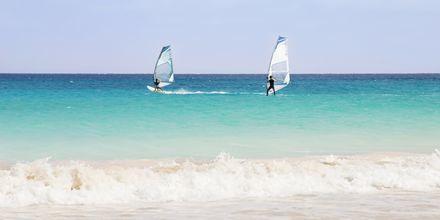 Windsurfing Santa Maria Beach på Sal, Kap Verde.