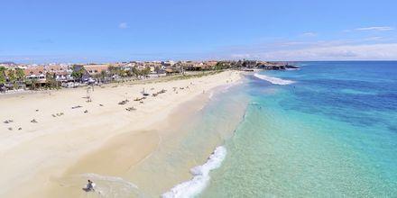 Stranden i Santa Maria på ön Sal, Kap Verde.