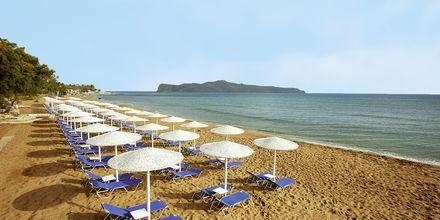 >Stranden vid hotell Santa Marina Beach på Kreta, Grekland.