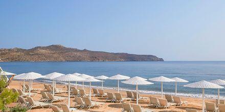 Stranden vid hotell Santa Marina Plaza på Kreta, Grekland.