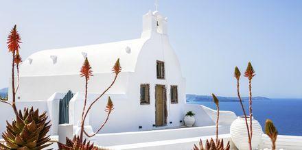 Kyrka i Oia på Santorini, Grekland.