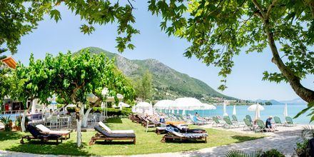 Trädgård och strand på hotell Seaview på Lefkas.