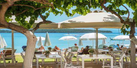 Snackbaren på hotell Seaview på Lefkas, Grekland.