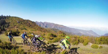 Madeira är en fantastisk ö för cykling.