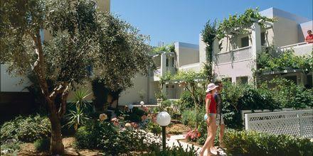 Hotell Sentido Pearl Beach i Rethymnon på Kreta.