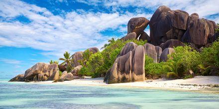 Stranden Anse Source d'Argent på ön La Digue är en av de vackraste på Seychellerna.