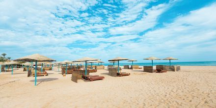 Stranden vid hotell Shams Safaga Resort i Abu Soma, Egypten.