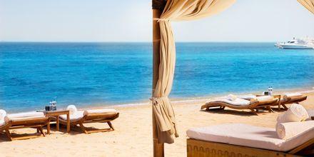 Stranden vid hotell Sharq Village & Spa i Doha, Qatar.