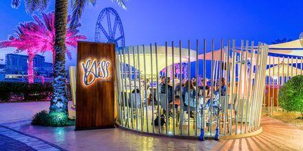 Bliss loungebar på hotell Sheraton Jumeirah Beach Resort i Dubai, Förenade Arabemiraten.