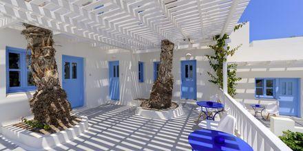 Terrass på Hotell Sigalas på Santorini, Grekland.