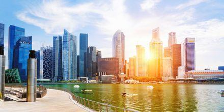 Singapore är känt för sina skyskrapor som tornar upp sig vid vattnet.