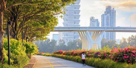 Njut av grönska och modernitet på en och samma gång i Singapore.