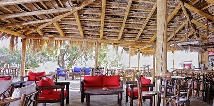 Beachtaverna nära Sirena Residence & Spa på Samos, Grekland.