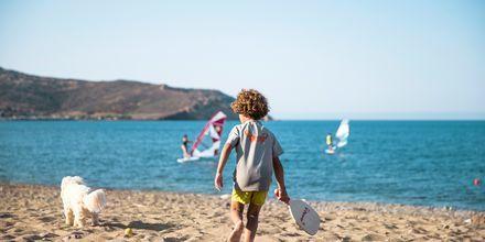 En resa till Sitia på Kreta passar familjer lika bra som vänner och par.