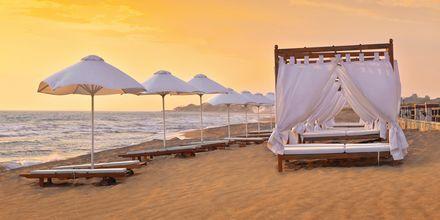 Stranden vid hotell Aldemar Olympian Village i Skafidia, Grekland.