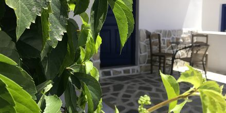 Hotell Skala, Ios, Grekland.
