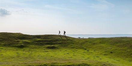 Bjärehalvöns kuperade landskap är perfekt för vandringsturer.