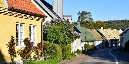 Skåne och Bjärehalvön/Båstad