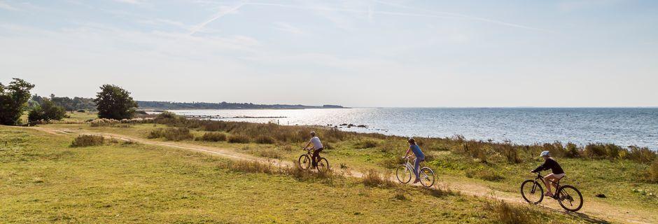 Båstad och området kring Bjärehalvön är särskilt populärt för magiska cykelturer.