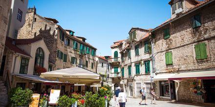 Veckan avslutas i Split. Här möter en guide upp för en stadsvandring.