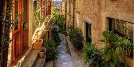 I Dubrovnik känner du kanske igen gator och torg från tv-serien Game of Thrones.