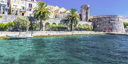 Korcula är en av de grönaste öarna i Adriatiska havet.