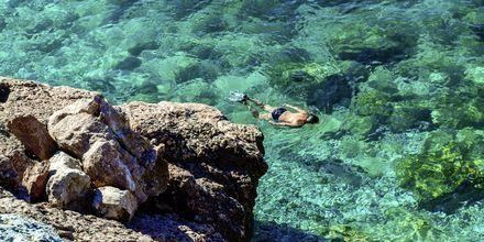 Snorkla i det kristallklara vattnet.